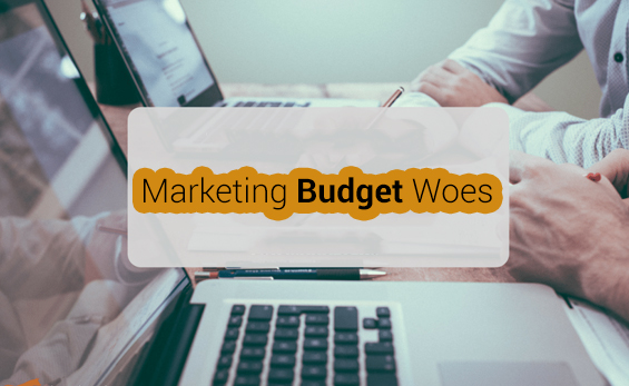 Marketing Budget Woes