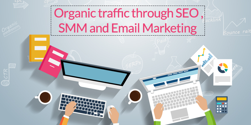 organic traffic through SEO & SMM